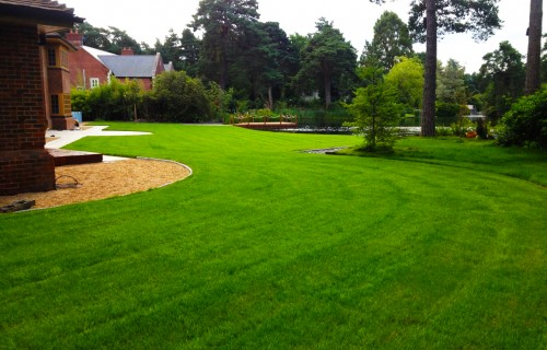 Lawn Maintenance in Southampton